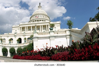 The U.S. Capitol building in Washington, D.C., with flowers in the foreground.