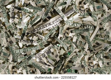US currency in shreds