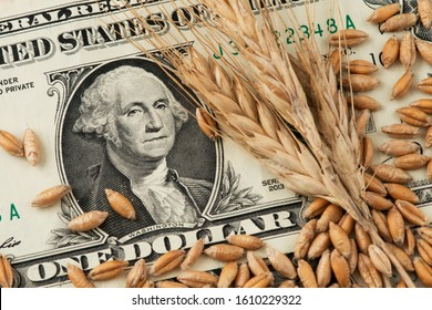 US One Dollar banknotes and wheat grains. Agricultural concept. Wheat Dollar Import and Export