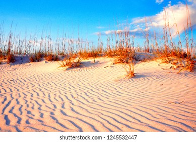 USA, Alabama, Gulf Shores, sand dune, sea oats