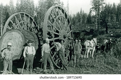 USA - CALIFORNIA - CIRCA 1895 A vintage photo of occupational lumberjacks working on moving a log with big wheel and horses which was used to transport lumber. Photo from the Victorian era. CIRCA 1895