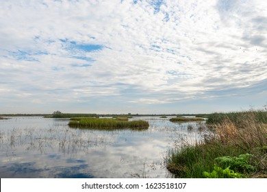 USA, California, Kern County, Kern National Wildlife Refuge. a brilliant blue sky with rippling clouds reflects in the surface waters of the wetlands.