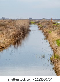 USA, California, Kern County, Kern National Wildlife Refuge. Irrigation Ditch at Kern National Wildlife Refuge allows for the control and distribution of water rights to farms in the valley.