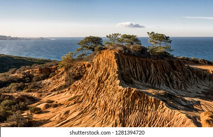 USA, California, La Jolla. Broken Hill area of Torrey Pines State Reserve