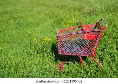 USA, California, Oakley, on the Sacramento Delta, empty grocery cart in field