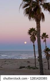 Usa, California, Oxnard. Pre dawn in full moonset.
