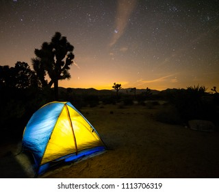 USA, California, San Bernadino County, Joshua Tree National Park: A brightly lit tent in Ryan Campground with a Joshua Tree silhouetted in the background against a starry night sky.