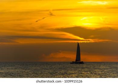 USA, Florida, Flock of birds flying next to huge catamaran while sunset on the ocean