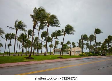 USA. FLORIDA. MIAMI BEACH, SEPTEMBER 2017: City of Miami Beach, hurricane Irma. Florida. USA.