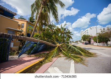 USA. FLORIDA. MIAMI BEACH, SEPTEMBER 11, 2017: City of Miami Beach, South Beach after Hurricane Irma.