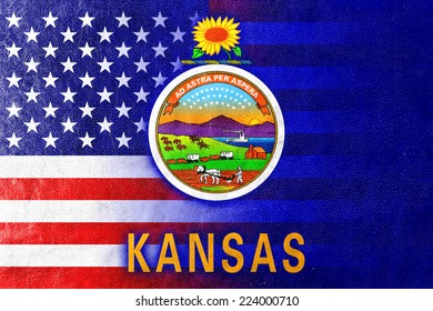 USA and Kansas State Flag painted on leather texture