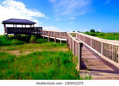 USA, Louisiana, Cameron Parish, Creole Nature Trail, National Scenic Byway, Sabine National Wildlife Refuge
