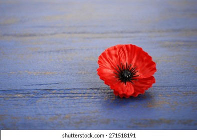 USA Memorial Day concept of red remembrance poppy on dark blue vintage distressed wood table, with copy space.