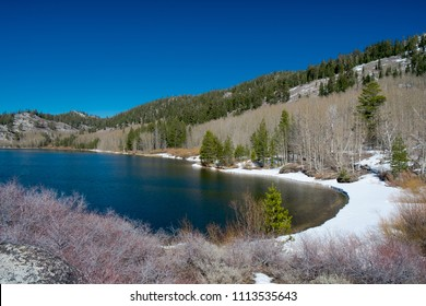 USA, Nevada, Carson City, Lake Tahoe Basin: The snow covered shore of Marlette Lake in the Sierra Nevada Mountains.