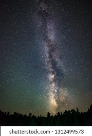USA, Nevada, Nye County, Elkhorn Canyon. The milky way extends nearly vertical above the Pinus woodland.