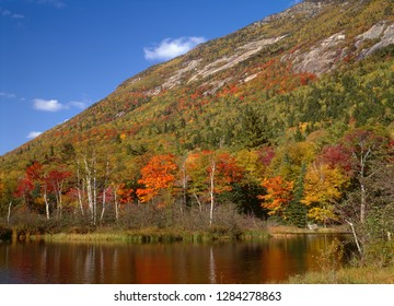 USA, New Hampshire, White Mountains, Crawford Notch State Park, Fall-colored northern hardwood forest and pond beneath Mt. Webster.
