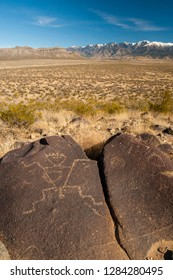 USA, New Mexico, Three Rivers. Petroglyph on rock at Three Rivers Petroglyphs Site. Credit as: Cathy & Gordon Illg / Jaynes Gallery / DanitaDelimont.com