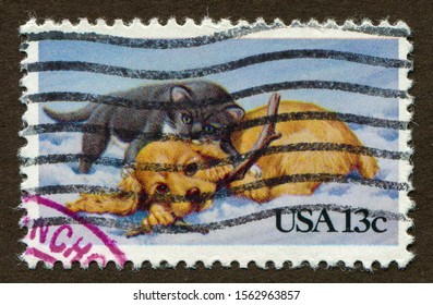 USA stamp no circa date: a stamp printed in USA shows Cute pets Cat and Dog illustration.