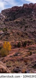 USA, State of Utah. Grand County. Mill Canyon Dinosaur Trail, near Moab.
