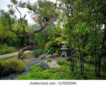USA Travel  Miami Botanical Garden