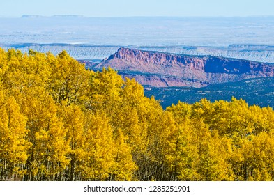 USA, Utah Scenic Byway Torrey to Boulder over Boulder Mountain Painted with Fall Color Alpine to Desert