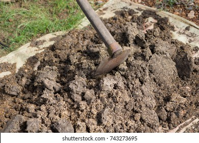 use a spade,mix manure with paddy and soil,Natural fertilizer
