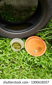 use tyres and plastic container with water and become mosquitoes breeding ground