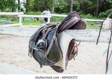 Saddle Pad Images, Stock Photos & Vectors | Shutterstock