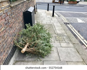 Used Christmas Tree dumped in a London Street on Twelfth Night