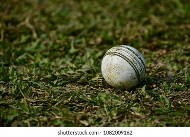 A used white cricket ball on a grass surface isolated unique stock photograph