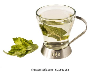 Useful herbal tea with dried leaves of blackcurrant isolated on white background. Used in healthy nutrition and herbal medicine
