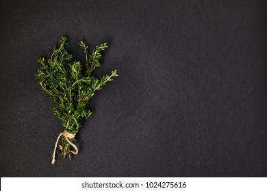 Useful herbs. Thyme.  Fragrant. Green. Freshness. For your design.