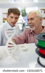 Useful information. Pleasant senior man pointing at the 3D DNA model while telling his intern about 3D printing