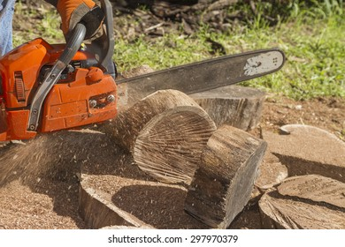 Using a chainsaw to process timber into firewood.