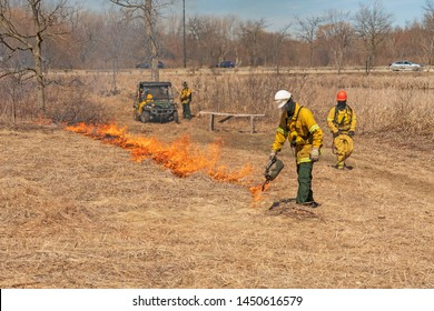 Using a Drip Torch to Start a Controlled Prairie Burn in Spring Valley Nature Center in Schaumburg, Illinois