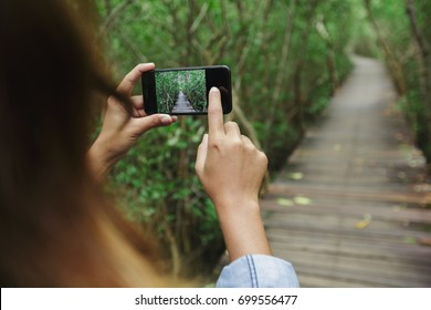 using phone taking photo in mangrove footpath