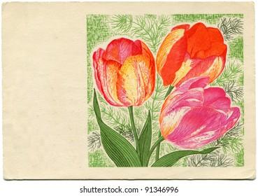 USSR - CIRCA 1968: Postcard printed in the USSR shows Tulips - picture artist Yuri Krivorukov, Kalinin city now Tver, USSR, 1968