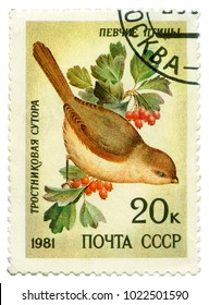USSR - CIRCA 1981: a post stamp printed in USSR, shows the bird Reed Sutor, songbirds, CIRCA 1981