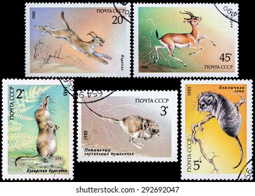 """USSR - CIRCA 1985: Stamps printed in USSR shows various animals from the series """"Endangered Wildlife"""", circa 1985"""