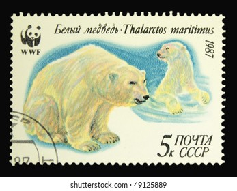 USSR - CIRCA 1987: A stamp printed in the USSR showing polar bear circa 1987