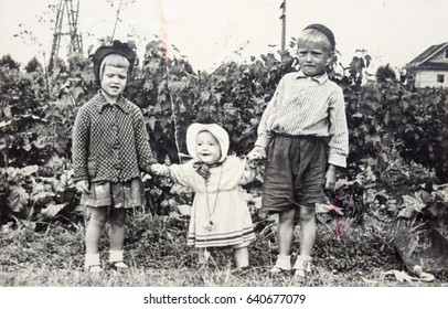 USSR, LENINGRAD, GORELOVO - CIRCA 1952: Vintage photo of group of kids in garden in Leningrad, USSR