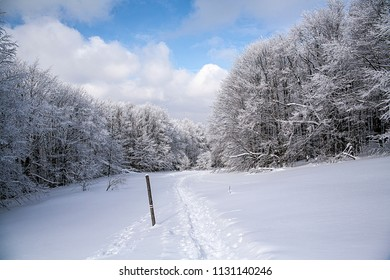Ustrzyki Gorne, Poland - February 24, 2018: Mountain trail to Tarnica in winter. Bieszczady National Park in winter. Winter in the Bieszczady. Snow-covered trees and mountains.