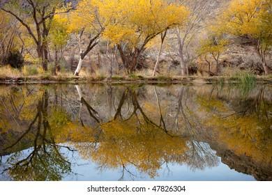 Utah nature scene