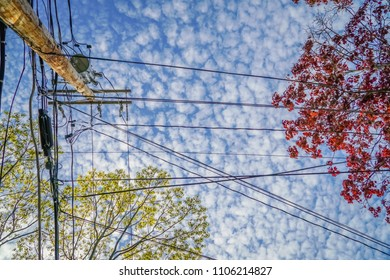 Utility pole and wires
