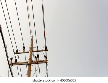 Utility pole at yeomridong sogeumgil (salt way)