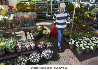 utrecht, netherlands, 15 march 2017: elderly woman with shopping trolley between flowers of market stall in the netherlands