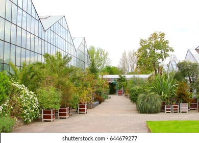 UTRECHT, NETHERLANDS - May 4. Greenhouses, exotic and tropical plants from all over the world in containers, science and research in Botanical Gardens of Utrecht University on May 4, 2015 in Utrecht.