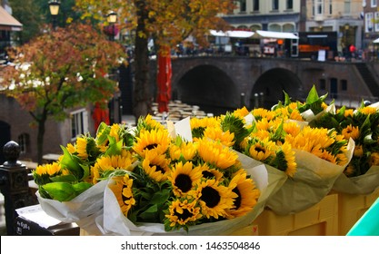 UTRECHT, NETHERLANDS - OCTOBER 20. 2018: View on bouquets of yellow sunflowers with blurred bridge and water canal background at flower market