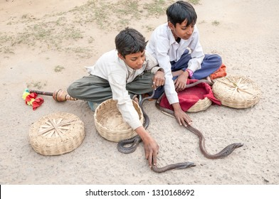 UTTAR PRADESH, INDIA - FEBRUARY 6, 2011:  Two young boys show Indian cobras in a village outside Agra. Snake shows and snake charming is popular in India.