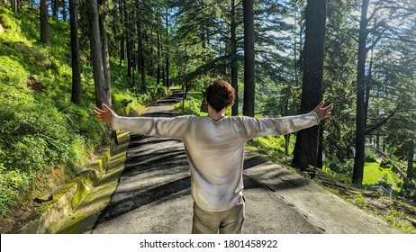 uttarakhand,india-2 june 2020:man in forest.man with stretched arms.travelling to forest.man on road.enjoying forest beauty.view of nature.nature love.wallpaper.man in forest wallpaper.freedom.